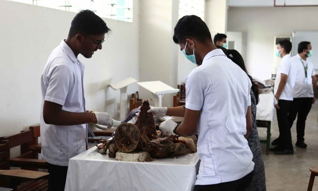 UV Gullas College of Medicine laboratory provides sufficient cadavers for Medical students